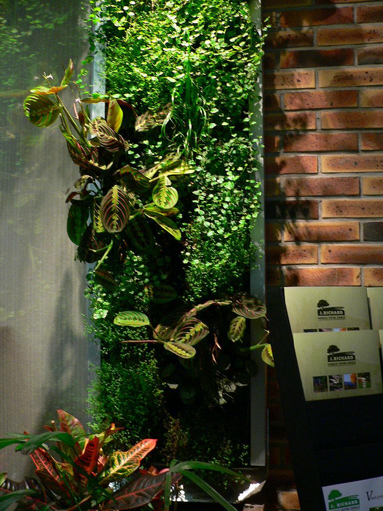 Mur vegetal exterieur cool stucture pour mur vgtal decofr with mur vegetal exterieur top mur - Mur vegetal exterieur leroy merlin ...